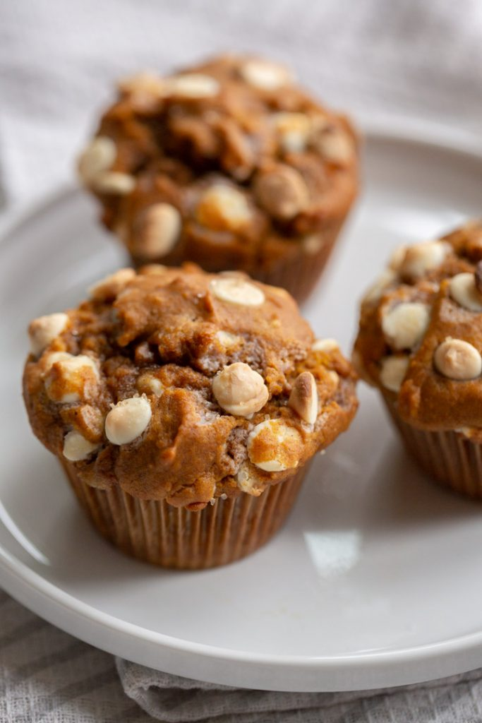 bakery style white chocolate chip pumpkin muffins on a white plate