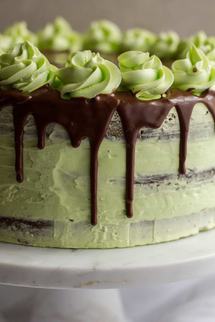 close up photo of mint julep cake with a chocolate ganache