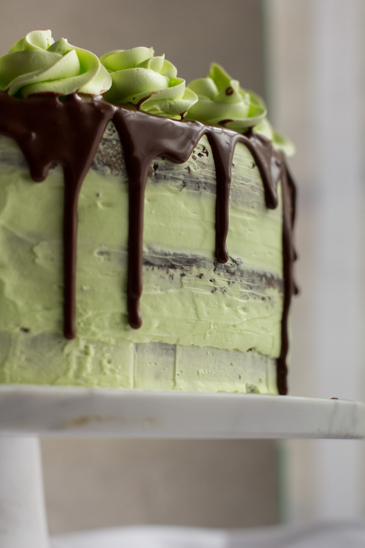 close up photo of the side of a mint julep cake on a white cake stand
